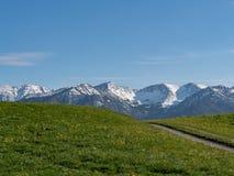 Mooi alpien landschap met weide en alpen in Beieren stock foto