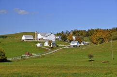 Mooi Amish-Landbouwbedrijf Stock Foto's