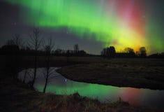 Mooi Aurora borealis in Estland Stock Foto