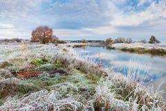 Mooi Autumn Belarusian Landscape: Een Gras met een Dikke Laag van Vorst, een Kleine Rivier en een Eenzame Oranje Eik op Sho wordt stock afbeeldingen