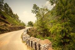 Mooi Aziatisch landschap royalty-vrije stock afbeeldingen