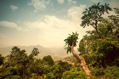Mooi Aziatisch landschap stock foto