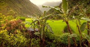 Mooi Aziatisch landschap stock fotografie