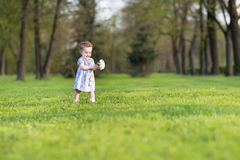 Mooi babymeisje in blauwe kleding met grote witte aster Royalty-vrije Stock Afbeeldingen