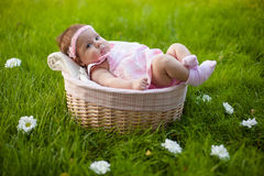 Mooi babymeisje in de mand Stock Afbeelding