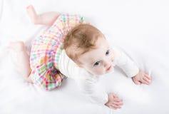 Mooi babymeisje die proberen te kruipen Stock Afbeeldingen
