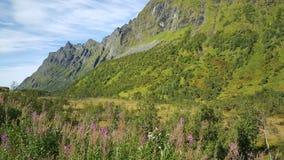 Mooi Bergketenlandschap Stock Afbeeldingen