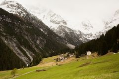 Mooi berglandschap in de Alpen met verse groene weiden in bloei op een mooie zonnige dag in de lente Dolomiti montains royalty-vrije stock foto
