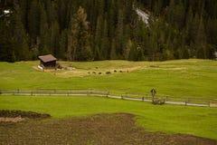 Mooi berglandschap in de Alpen met verse groene weiden in bloei op een mooie zonnige dag in de lente Dolomiti montains stock afbeeldingen
