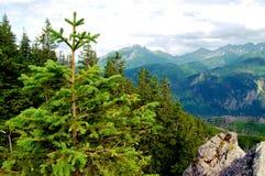Mooi berglandschap met meningen van de diepe vallei Stock Foto's
