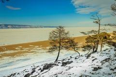 Mooi berglandschap van Altai, de herfst, Altai-berg Rusland stock afbeeldingen