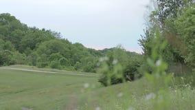 Mooi bergpanorama met bomen, gras, wolken en landweg stock footage