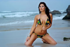 Mooi bikinimeisje Royalty-vrije Stock Afbeelding