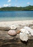 Mooi Blauw oceaan en wit zandstrand Stock Fotografie