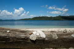 Mooi Blauw oceaan en wit zandstrand Royalty-vrije Stock Foto