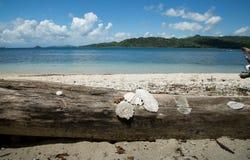 Mooi Blauw oceaan en wit zandstrand Royalty-vrije Stock Fotografie