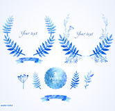 Mooi blauw rond kader van bloemenelementen Stock Foto
