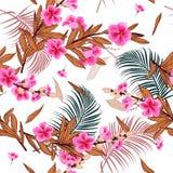 Mooi Bloeiend Modieuze Tuin bloemenpatroon in vele ki stock illustratie