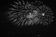 Mooi bloeiend vuurwerk Stock Foto's