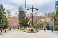 Mooi bloembed in Baku boulevard in de lente azerbaijan Stock Fotografie