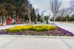 Mooi bloembed in Baku boulevard in de lente azerbaijan Stock Afbeeldingen