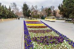 Mooi bloembed in Baku boulevard in de lente azerbaijan Royalty-vrije Stock Foto