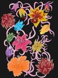 Mooi Bloemen Vectorontwerp Stock Foto