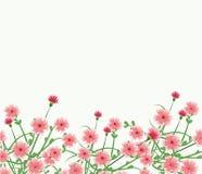 Mooi bloemenframe Stock Afbeeldingen
