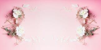 Mooi bloemenkader op pastelkleur roze achtergrond, hoogste mening, banner Feestelijk groetconcept stock afbeeldingen