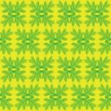 Mooi bloemenornament, Vector naadloos patroon Stock Fotografie