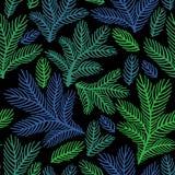 Mooi bloemenornament, Vector naadloos patroon Stock Foto's