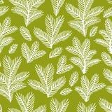 Mooi bloemenornament, Vector naadloos patroon Stock Afbeeldingen