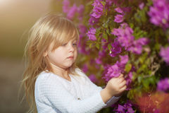 Mooi blond meisje met lange haar ruikende bloem royalty-vrije stock fotografie