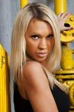 Mooi blonde meisje Royalty-vrije Stock Afbeeldingen