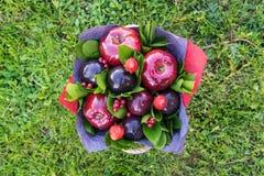 Mooi boeket van bessen en vruchten pruim, appel, aardbei Royalty-vrije Stock Fotografie