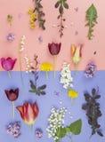 Mooi boeket van bloemen in ge?soleerde vaas stock foto's