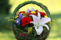 Mooi boeket van bloemen voor vrouwen royalty-vrije stock foto's