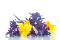 Mooi boeket van de lentebloemen Royalty-vrije Stock Fotografie