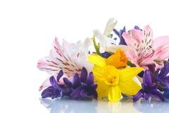 Mooi boeket van de lentebloemen Stock Foto