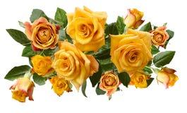 Mooi boeket van geelachtige oranje die rozen op witte achtergrond worden geïsoleerd Stock Foto's