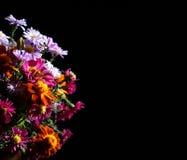 Mooi boeket van heldere wildflowers Stock Fotografie