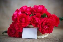 Mooi boeket van rode rozen Royalty-vrije Stock Foto's