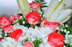 Mooi boeket van rode rozen van lelie en chrysant Royalty-vrije Stock Fotografie