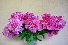 Mooi boeket van roze pioenen in vaas stock afbeeldingen