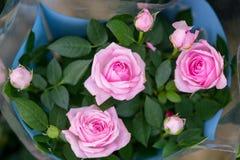 Mooi boeket van roze rozen, kleine knoppen royalty-vrije stock afbeeldingen