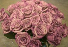 mooi boeket van sappige heldere lilac rozen Royalty-vrije Stock Afbeeldingen