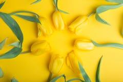 Mooi boeket van tulpen Royalty-vrije Stock Foto