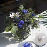 Mooi boeket van wilde bloemen stock foto's