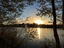 Mooi bos met het magische zonlicht royalty-vrije stock fotografie