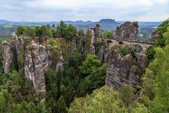 Mooi bos Saksisch Zwitserland Stock Afbeelding